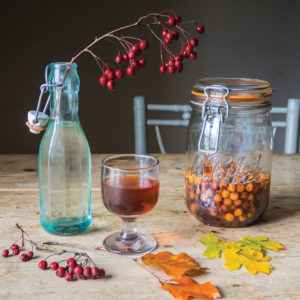 Hawthorn Gin from 'Making Winter' by Emma Mitchell.